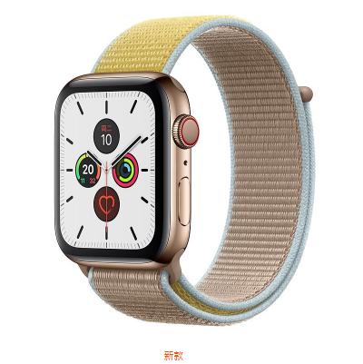 Apple Watch Series 5金色不锈钢表壳;回环式运动表带  40 毫米(表带颜色:冰洋蓝色、铁锚灰、石榴色、卡其色、驼色、午夜蓝、彩虹色可选)